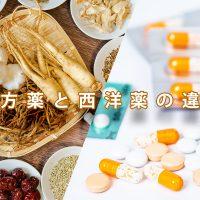 漢方薬と西洋薬の違い